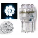 1 Ampoule à 8 LED T20 Blanche - Simoni Racing